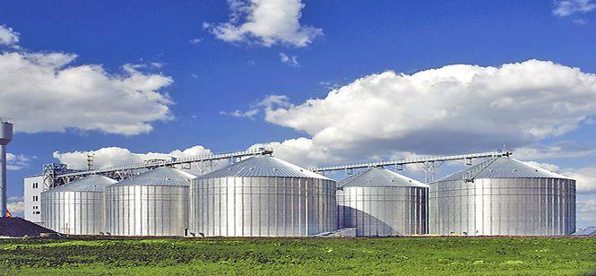 В Липецкой области строят крупнейший в Европе инкубаторий и самый большой в России элеватор